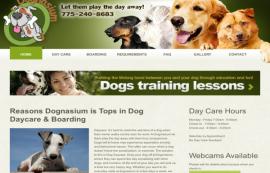 Dognasium.net